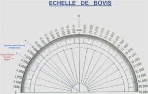 bovis,wihea,paranormal,pendule de voyance,pendule de divination